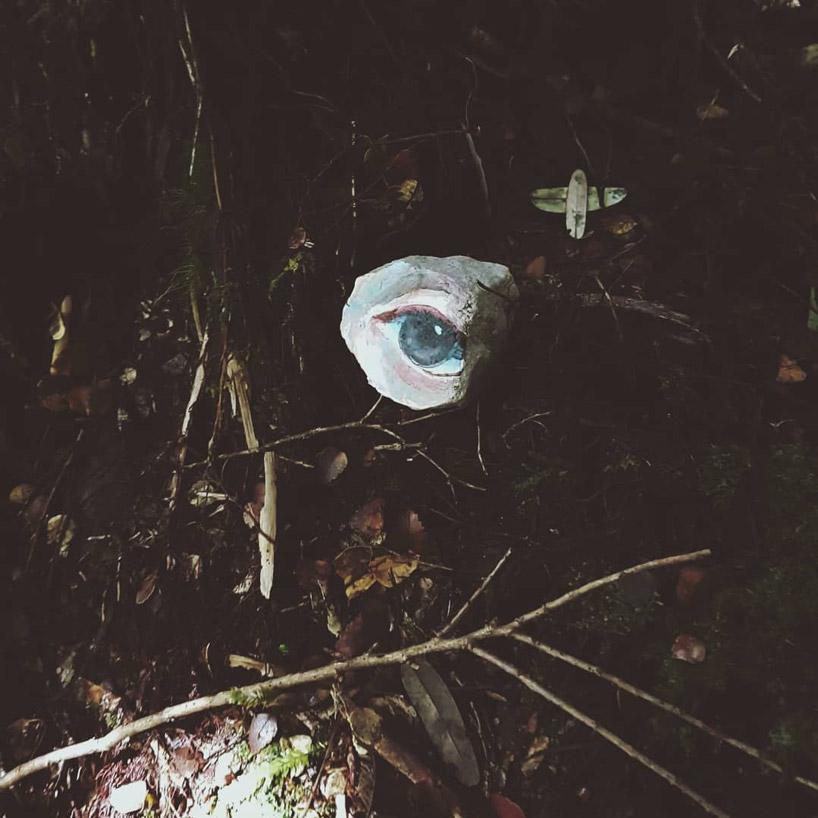 چشمان رنگی که در طبیعت پیدا شدند