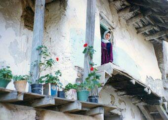 از زیر درختان زیتون تا سیستم هشدار دهندهی زلزله