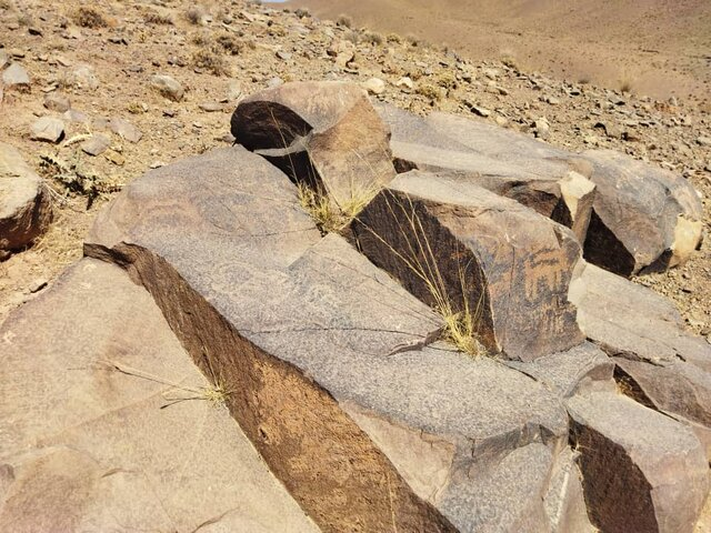 یک مجموعه سنگنگاره در محلات کشف شد